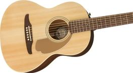 Travel Guitars Link