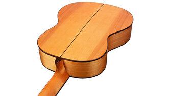 Cordoba Iberia F7 Flamenco Nylon Guitar