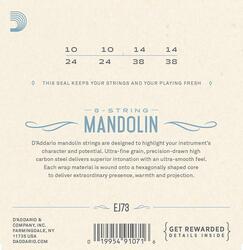 D'Addario EJ73 Mandolin Strings, Phosphor Bronze, Light, 10-38