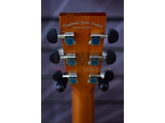 Tanglewood Discovery DBT D EB Acoustic Guitar