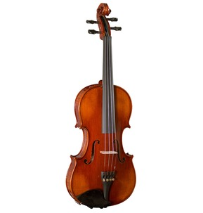 Hidersine Piacenza Violin Outfit with Wittner Fine Tune Pegs