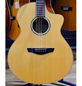 Faith Hi-Gloss Neptune Cutaway Electro Acoustic Guitar & Hard Case