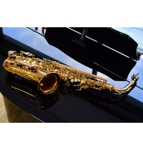 Paragon Alto Saxophone Outfit  in Gold Lacquer including Back Pack Case