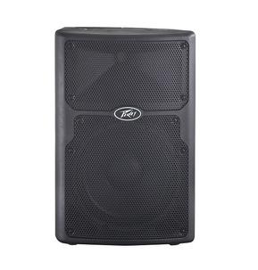 Peavey PVXp 10 PA Speaker