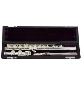 Trevor James 3041e TJ10X MK IV SP Flute E Mech Outfit