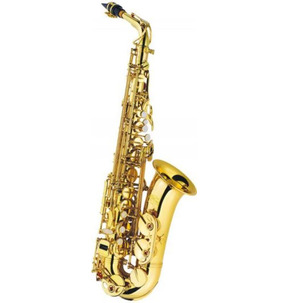 J. Michael Alto Saxophone Outfit - Used