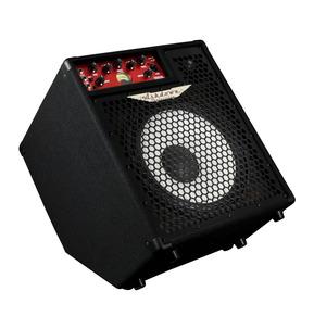 Ashdown OriginAL C112-300 Kickback Bass Combo