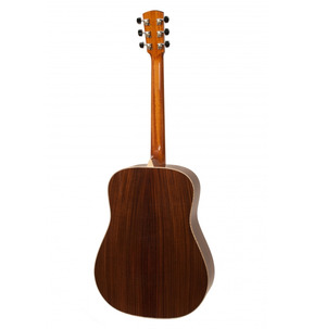 Larrivee D-09 Artist Series Acoustic Guirtar & Case