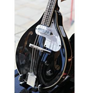 Tanglewood Union Series TWM T BKP E Electro Mandolin