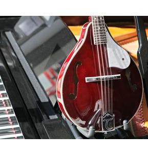 Tanglewood Union Series TWM T WRP Mandolin
