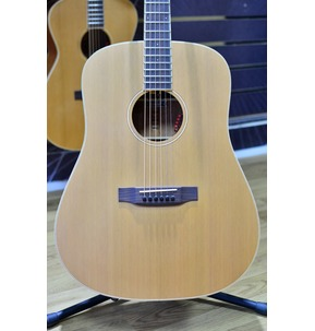 Auden Neo Colton Dreadnought Electro Acoustic Guitar & Case