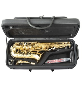 Trevor James 'The Horn' Alto Sax Outfit - Gold Lacquer