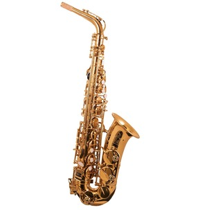 Trevor James 'The Horn' Alto Sax Outfit - Gold Lacquer