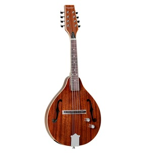 Tanglewood TWM T MH STE Electro Mandolin