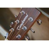 Tanglewood Winterleaf TW2 Acoustic Guitar & Case