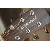 Tanglewood Winterleaf TW3 E Electro Acoustic Guitar & Hard Case