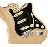 Fender American Professional Stratocaster, Natural, Maple