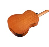 Cordoba Protege C1M Classical Nylon Guitar