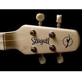 Seagull M4 Spruce Portable Dulcimer Inspired Instrument