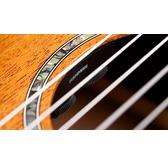 Cordoba Iberia C4-CE Electro Classical Nylon Guitar