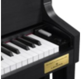 Casio Celviano GP-400 Satin Black Digital Piano