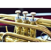 Paragon Cornet Outfit including ABS Case, Mouthpiece and Polishing Cloth