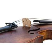 Stentor Verona 4/4 Violin Outfit