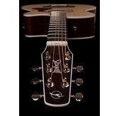 Seagull Maritime SWS Concert Hall CW Semi-Gloss QIT Electro Acoustic Guitar