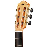 Cordoba Iberia GK Pro Maple Electro Classical Nylon Guitar & Case