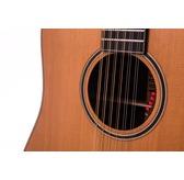 Auden Artist R Colton Dreadnought 12-String Electro Acoustic Guitar & Case