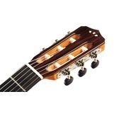 Cordoba Fusion 12 Maple Electro Classical Nylon Guitar