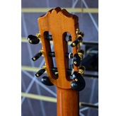 Cordoba Luthier C10 Parlour Classical Nylon Guitar & Case