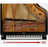 Kawai CN29 Digital Piano - Free Home Installation